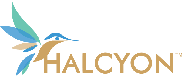 Halcyon Support A Zoho partner